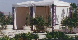 Poolside Canopies